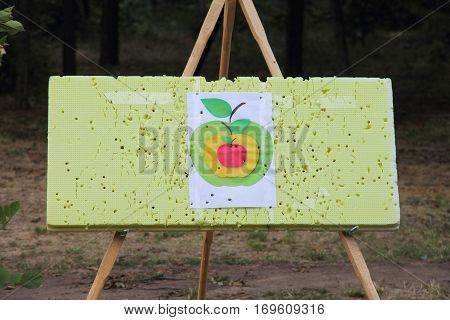 board with a target to train hitting the aim