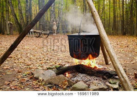 Bonfire, hanging pot in yellow autumn forest and deer out of focus