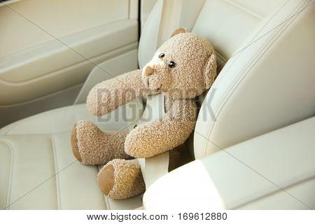 Car seat with buckled  teddy bear
