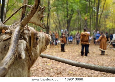 Stuffed deer and people in national costumes of Chukchi out of focus in fall forest