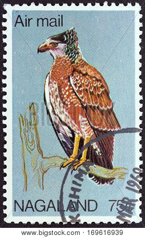 NAGALAND STATE - CIRCA 1969: A stamp printed in India shows a Crested Serpent Eagle (Spilornis cheela), circa 1969.