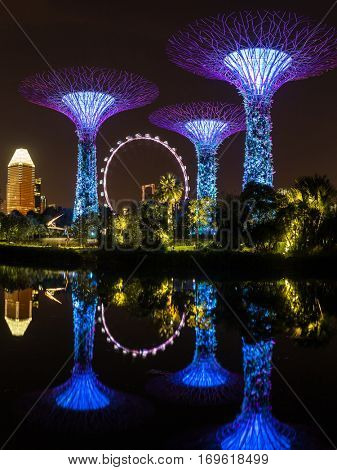 Singapore - June 25, 2016: Night view of illuminated Supertree Grove at Gardens by the Bay in Singapore