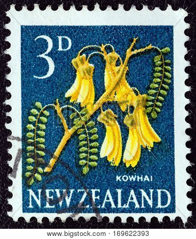 NEW ZEALAND - CIRCA 1960: A stamp printed in New Zealand shows Kowhai tree flowers, circa 1960.