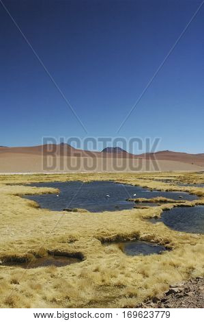 Lovely landscape in the cordillera of the Andes