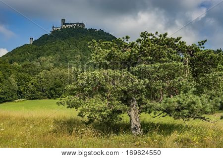 Look at the top of the mountain with an ancient castle Bezdez/Czech Republic
