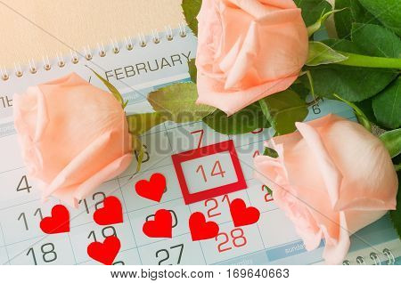 St Valentines day background - roses of light peach color and two red hearts on the calendar with framed St Valentines day date February 14. St Valentines day card
