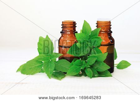 Glass dropper bottles of sweet basil essential oil. Fresh green plant leaves.