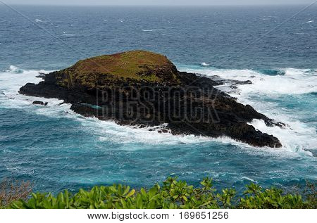 This tiny islet at te tip of Kilauea Point gets punded by the relentless waves from all sides.