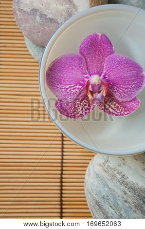 Pink orchid in bowl and white stones on mat background