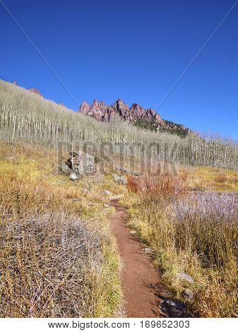 Hiking Path In Maroon Bells Snowmass Wilderness, Usa.
