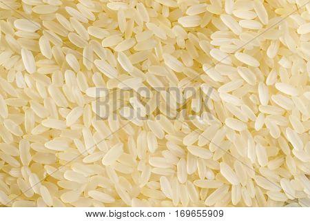 rice raw food ingredient texture macro close up detailed