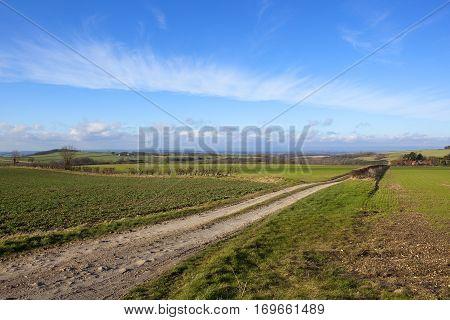 English Agricultural Vista