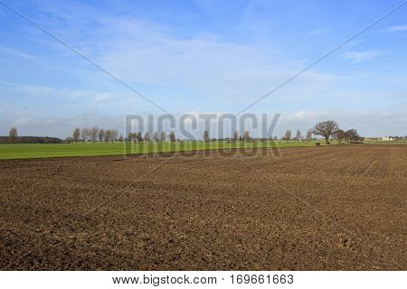 Wheat And Plow Soil