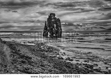 Hvitserkur rock landmark in Iceland, black and white landscape.