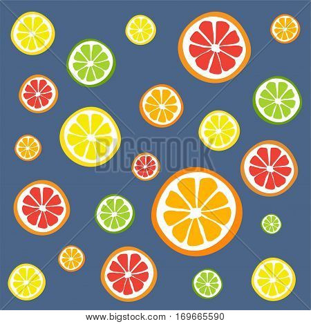 Collection of citrus slices - orange, lemon, lime and grapefruit, icons set, colorful isolated on white background, vector illustration