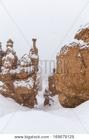 Heavy falling snow on Hoodoo formations at Bryce Canyon National Park in Southern Utah.