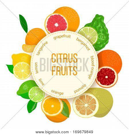 Citrus fruits realistic set with round emblem. Bergamot, lemon, grapefruit, lime, mandarin, pomelo, blood orange with slices. For cosmetics, market, health care products. For logo design tag label