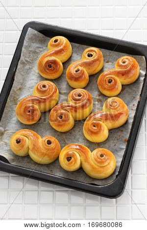 homemade swedish saffron buns, lussekatt