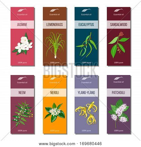 Essential oil tags set. Sandalwood, patchouli, Ylang-ylang, neem, neroli, lemongrass, Eucalyptus, jasmine 8 stripes collection For cosmetics perfume health care products aromatherapy