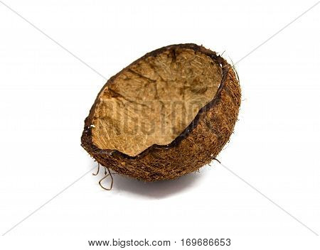 The Coco Without Stuffing, Is Isolated, Coconut Empty