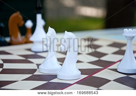 Chess Game. White Chess Pieces On The Hexagonal Board.