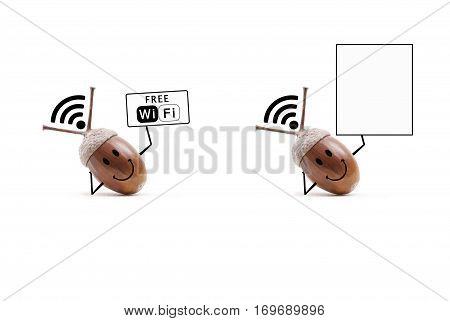 funny oak acorn using its shell as free wifi receiver and holding up free wifi sign isolated on white background