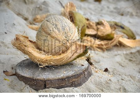 Peeled coconut and peel beside it on the sand.