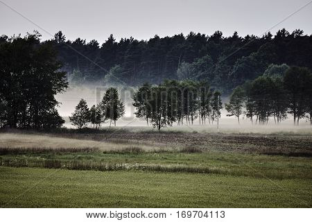 Village landscape with streaks of mist in Poland