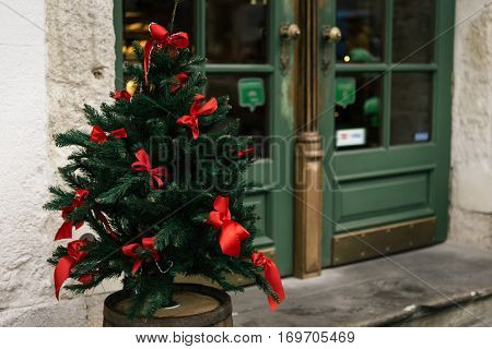 Stylish Natural Green Christmas Tree With Red Bows, Celebration Decoration For Holidays In The City