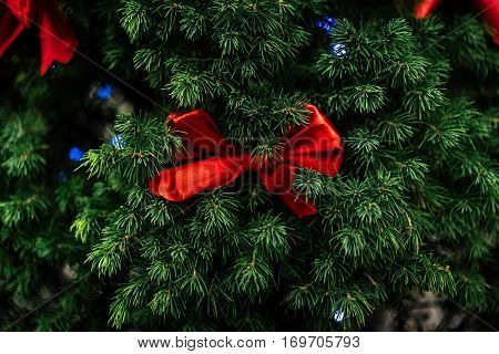 Stylish Red Bows On Natural Green Christmas Tree And Garland Lights , Celebration Decoration For Hol