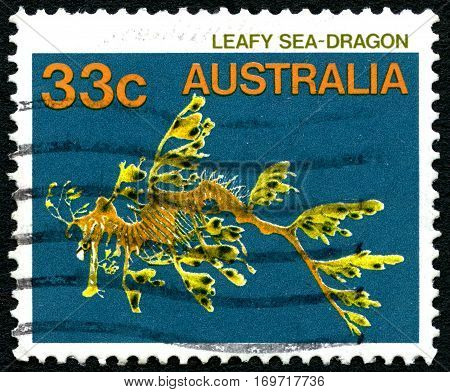 AUSTRALIA - CIRCA 1984: A used postage stamp from Australia depicting an illustration of a Leafy Sea Dragon circa 1984.