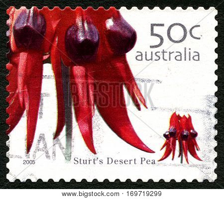 AUSTRALIA - CIRCA 2005: A used postage stamp from Australia depicting an image of a Sturts Deset Pea flower circa 2005.