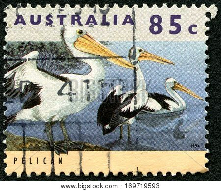 AUSTRALIA - CIRCA 1994: A used postage stamp from Australia depicting an image of Pelicans circa 1994.