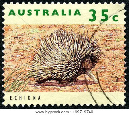 AUSTRALIA - CIRCA 1992: A used postage stamp from Australia depicting an image of an Ehidna circa 1992.