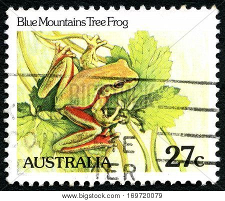 AUSTRALIA - CIRCA 1981: A used postage stamp from Australia depicting an illustration of a Blue Mountain Tree Frog circa 1981.