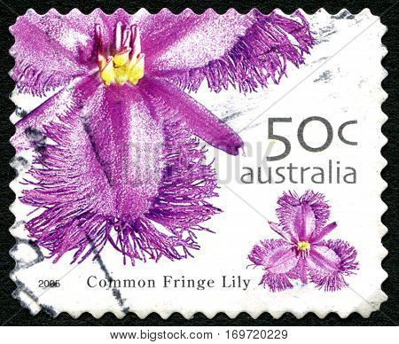 AUSTRALIA - CIRCA 2005: A used postage stamp from Australia depicting an image of a Common Fringe Lily circa 2005.