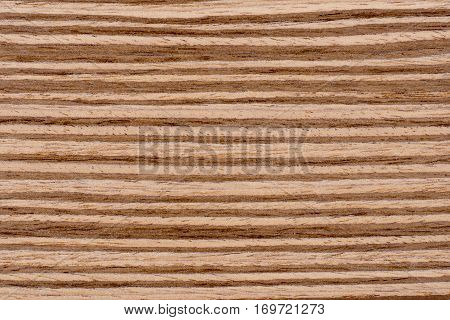 Texture of brown zebrano veneer wood background