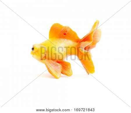 The Miniature toy gold fish.