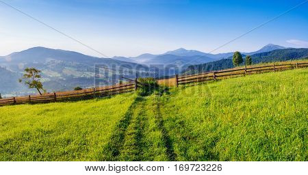 Mountain summer landscape. High grass and cloudy sky. A clear, Sunny day