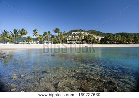View of beautiful Airlie Beach Queensland Australia with its white sands fringed by tropical palms on a sunny summer day in a travel concept