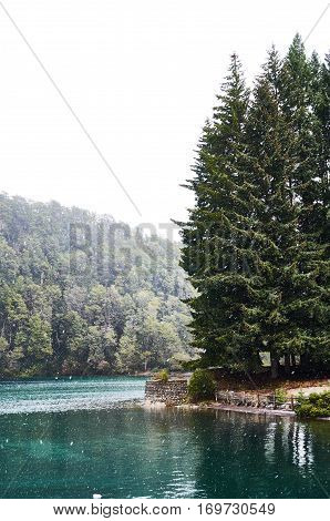 Snowing in Bahia Mansa in Villa La Angostura with a beautiful view of the lake and some pine trees.