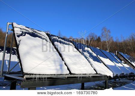 Solar winter under the snow are unproductive