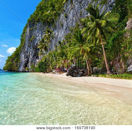 El Nido, Palawan island, Philippines. Blue bay and palm trees.