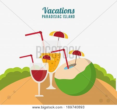 vacations paradisiac island cocktails drink celebration vector illustration eps 10