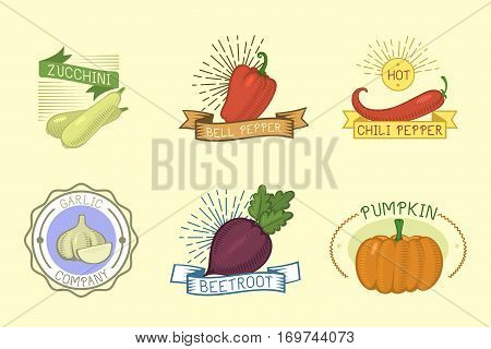 Vector vegetables logos, label templates, badges, emblems, design elements and icons. Vegan product vintage restaurant raw plant. Natural healthy organic symbol.