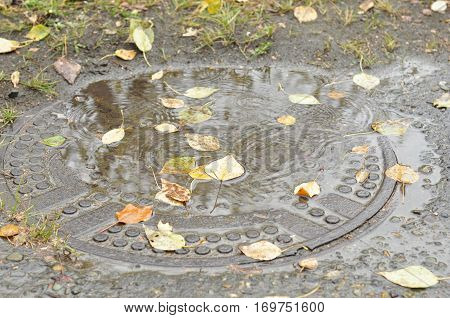 Fallen leaves on a cover of a manhole.