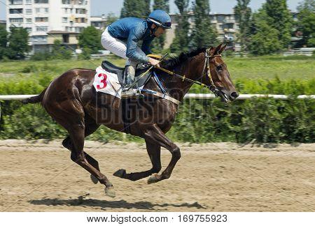 Horse race for the prize of Otkritia in Nalchik, Caucasus, Russia.