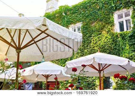 summer street cafe interior with white umbrella in green city park, ornate with flowers and decorative elements