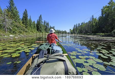 Paddling Through the Lily Pads on Crawford Lake in Quetico Provincial Park in Ontario