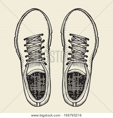 Vector Sketch Illustration, Pair of Skaters Shoes. Top View.